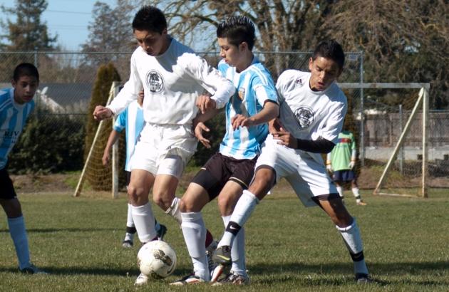 black oaks vs deportivo Santa Rosa