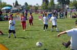 U6 Black Oaks Soccer Team