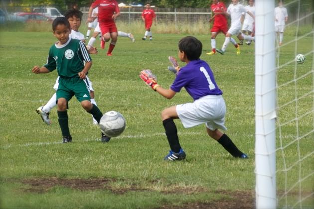 Action-Shots-Spring League-2015