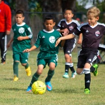 Black Oaks spring soccer league May 1605