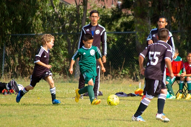 Black Oaks spring soccer league May 1636