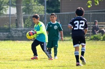 Black Oaks spring soccer league May 1648