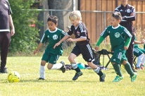 Black Oaks spring soccer league May 1650